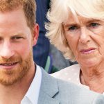 Prince Harry has praised his stepmother Camilla (Image GETTY )