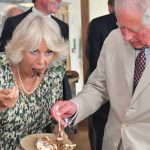 Princess Diana fans attacked Camilla on her 71st birthday Image Photo (C) PA