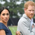Meghan Markle Prince Harry has bowed to his wife's love of dogs (Image Getty)