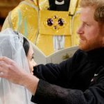 Meghan Markle The Duchess' veil contained flowers from the Commonwealth nations (Image GETTY)