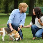 Meghan and Harry look-alikes were even spotted walking a Beagle – the same breed of dog Meghan owns (Image PA)