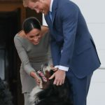Meghan is a known dog lover, already owning one rescue dog herself (Image Getty Image)