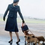 The Monarch arrives in Balmoral with her dogs in tow, 1974 (Image GETTY IMAGES)