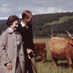The Queen walks amongst highland cattle with Prince Philip by her side, 1972 (Image GETTY IMAGES)