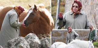 The Queen visits her horses in Balmoral (Image Peter Jolly REX Shutterstock)