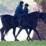 Prince Andrew enjoyed a morning horse ride around Windsor today Image Kelvin Bruce