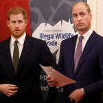 The Duke of Sussex left and the Duke of Cambridge during the United for Wildlife Financial Taskforce event at Mansion House in London earlier this month