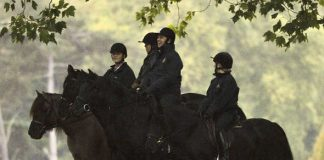 The Yorks bravce the rain for a ride in Windsor Great park Image Mark Kehoe