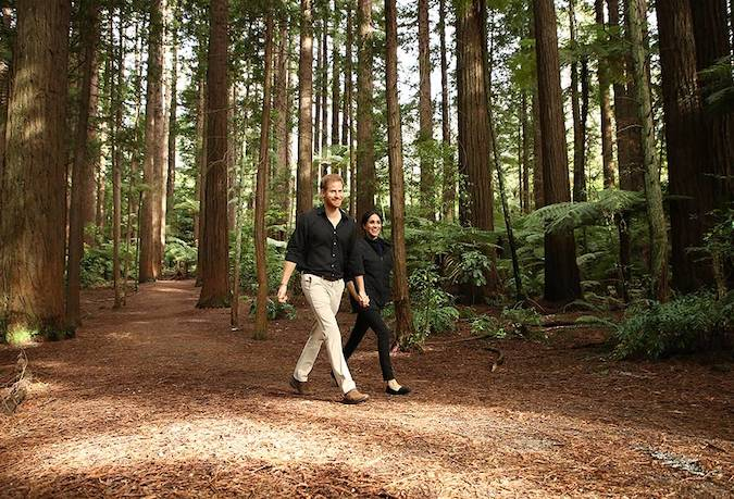 While in New Zealand the couple were able to admire the true beauty of the country as they visited Redwoods Tree Walk Photo C GETTY