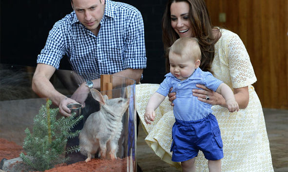 1 Prince George visits the bilbies at Taronga Zoo in Sydney Image Getty