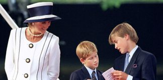 2 Princess Diana Prince William and Prince Harry Image Getty