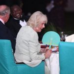 Camilla has been wowing with her jewellery collection PA