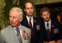 Harry and William rank higher in the poll than Charles Image GETTY