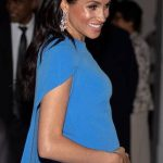 MID OCTOBER Whilst attending a reception and state dinner hosted by the President of Fiji mum to be Meghan showed off her blossoming bump Photo C GETTY