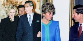 Prince Diana Camilla Parker Bowles and Prince William Image Getty