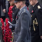 Prince Harry and Prince William lay wreaths during the Remembrance Day parade Image GETTY