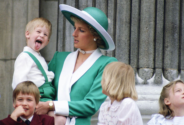 Prince Harry and William lost their mother in 1997 Image GETTY IMAGES