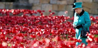 Queen Elizabeth II news The Queen visits the Blood Swept Lands and Seas of Red poppy display Image Getty