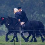 The Queen was seen horse riding on her estate in Windsor Image KELVIN BRUCE