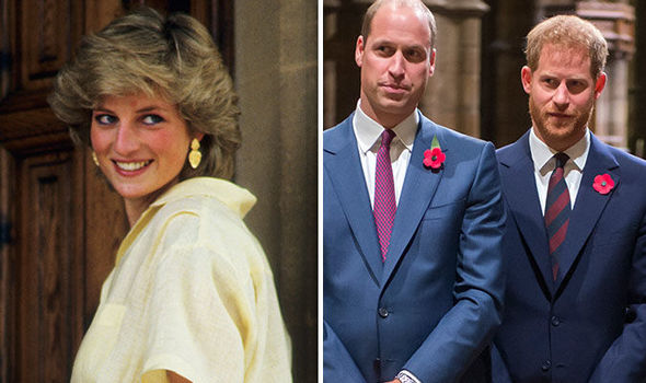 rince Harry and William are hot headed like Diana reveals Robert Jobson Image GETTY