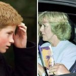 A former friend of the Princess of Wales claims Harry did not know about Camilla Image Getty