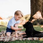Back in his shorts Prince George pictured feeding an ice cram to the family dog Lupo in aon offcial portrait taken at Sandringham in 2016