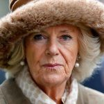Camilla Parker Bowles The reason behind the Duchess's no show was that Camilla has a heavy cold Image Getty Images
