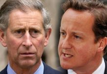 Charles' cringeworthy advice to Prime Minister David Cameron revealed Image Getty