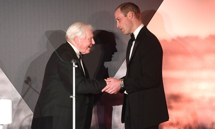 Prince William to interview TV royalty David Attenborough for this special reason Photo C GETTY
