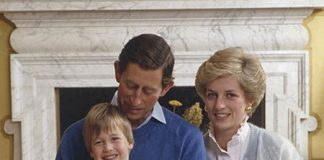 Princess Diana was hurt by Charles comment about Harry Image GETTY