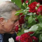 Growers still believe that communicating with plants was an effective technique including Charles Image Getty