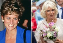 Princess Diana fans hit out at Camilla Duchess of Cornwall Image GETTY
