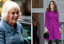 Royal author Katie Nicholl says there were real fears that Kate would become the next Camilla Image Getty