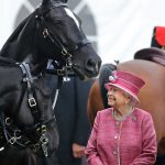 The Queen has a strong affection for horses Photo C GETTY
