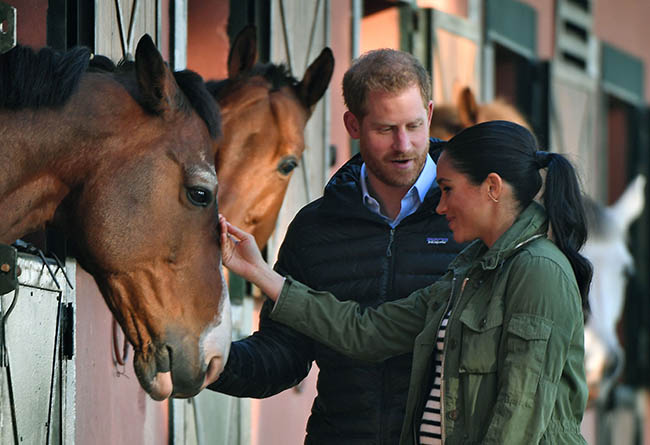 Prince Harry and Meghan Markle pet horses during final day of Morocco royal tour see pictures Photo C GETTY IMAGES