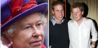 The Queen was unimpressed with Princes Harry and William according to a royal author Image Getty