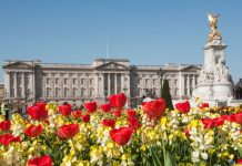 Spring has sprung and it looks like Buckingham Palace got the memo On Wednesday Prince Harry and Duchess Kate stepped Photo C GETTY IMAGES