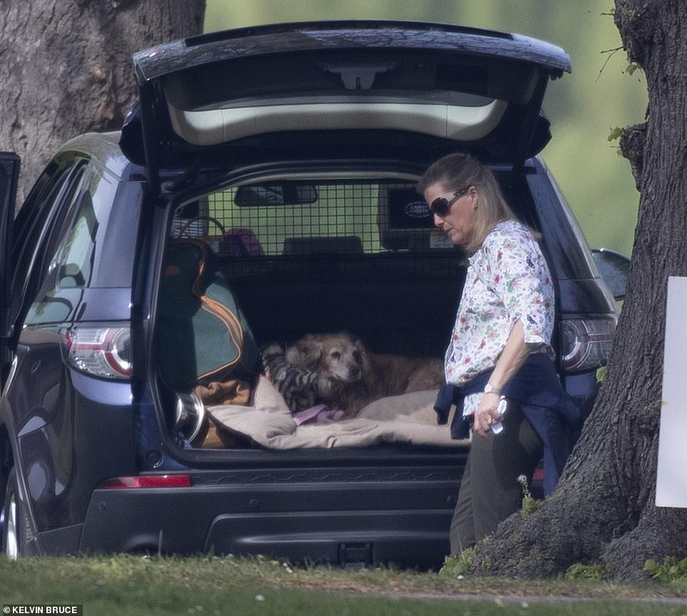 Countess Sophie of Wessex appeared to drive to the castle and let the familys dogs out from to run around the expansive grounds