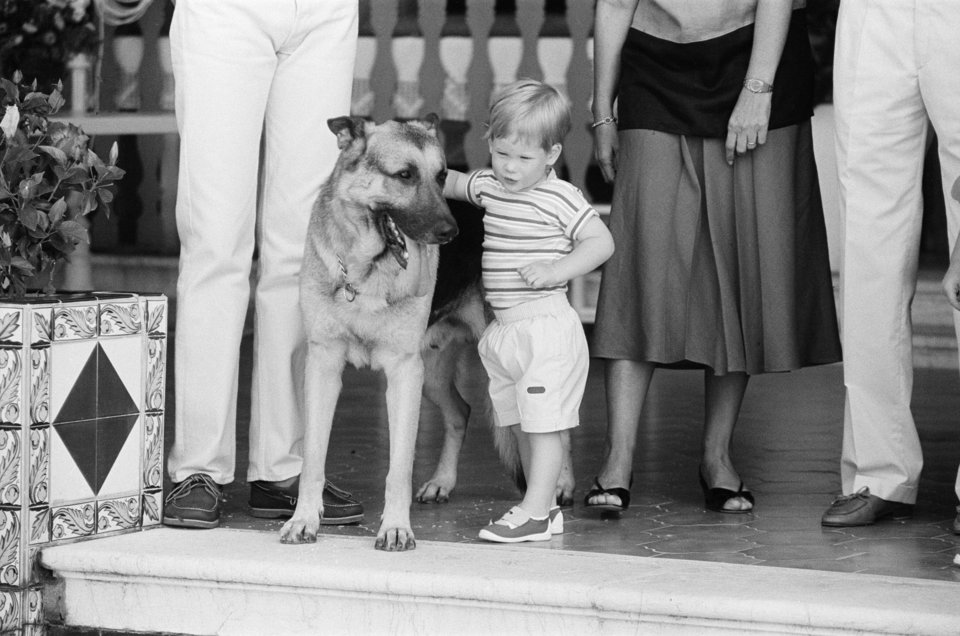 Prince Harry Childhood Photo C GETTY IMAGES