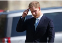 Prince Harrys body language Image Ian Vogler Daily Mirror