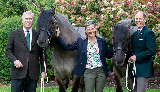 Sophie has just been appointed royal vice president of the Royal Windsor Horse Show revealed Photo C GETTY IMAGES