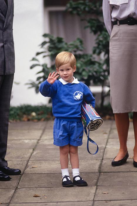 prince harry education