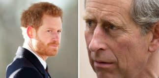 Prince Harry reportedly argued with his father Prince Charles Image Getty