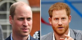 Prince William and Prince Harry love giving each other a hard time Ms Menza claimed Image GETTY