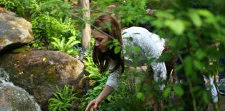 Why Kate Middletons garden wont win an award at the RHS Chelsea Flower Show Photo C GETTY IMAGES
