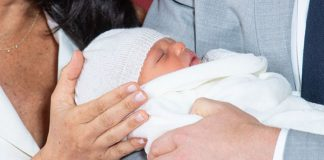 baby sussex z