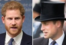 Prince William and Prince Harry have reportedly fallen out due to rivalry Seward claimed Image GETTY