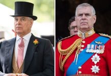 The Duke of York Image Getty