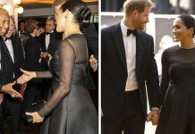 Meghan Markle fury The remark that shocked royal fans as Pharrell raises royal romance Image GETTY