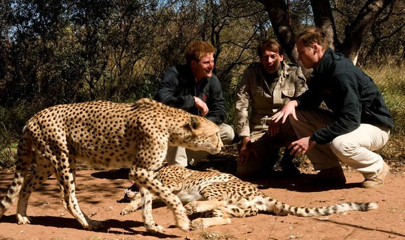 Prince Harry and Prince William have spent time together in Botswana Image Getty